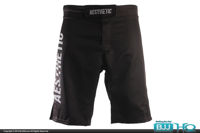 Aesthetic IBJJF Shorts